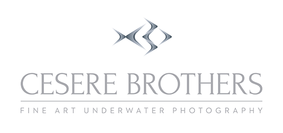 Cesere Brothers Photography Logo