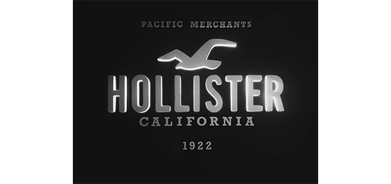 Hollister Co. Logo
